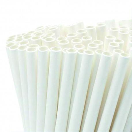 Biodegradable Pasta Straws Pack 100 PZ
